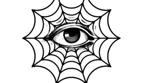 Web Sight