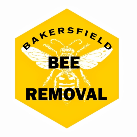 Bakersfield Bee Removal